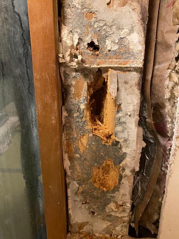 東京都江戸川区 K様邸 雨漏り補修 外壁からの雨水侵入 タイル外壁 (1)